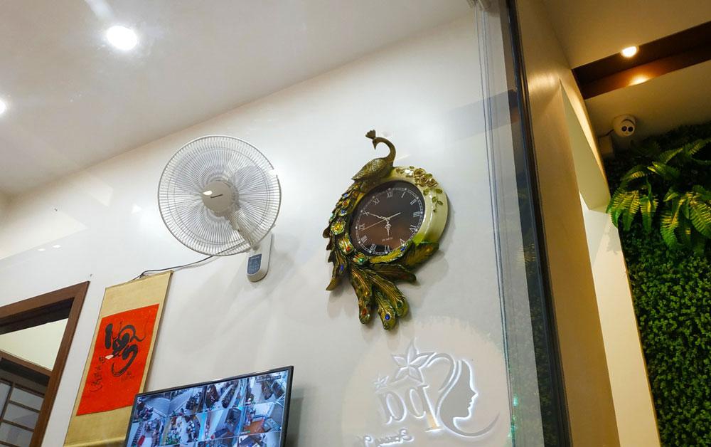 Đồng hồ trang trí đẹp chim công